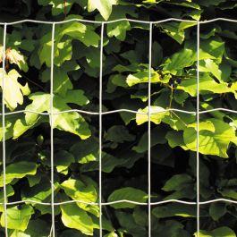 Puutarha-aita Verkon silmäkoko 5 x 10 cm galvanoitu Hortus