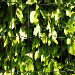 Puutarha-aita Verkon silmäkoko 5 x 10 cm musta Hortus
